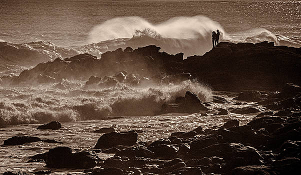 Watching the Waves by Nancy De Flon