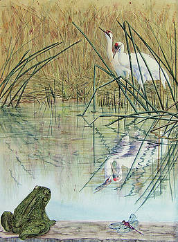 Vicky Lilla - Watching the Whoopers