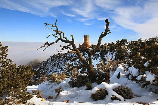 Watchtower in Winter by Mike Buchheit
