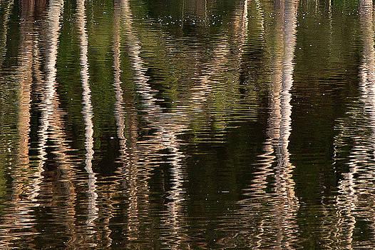 Water Bumps by David Benson