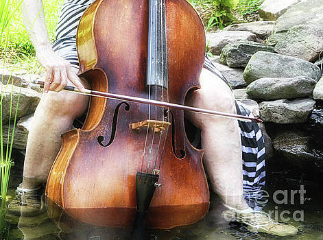 Water Cello  by Steven Digman