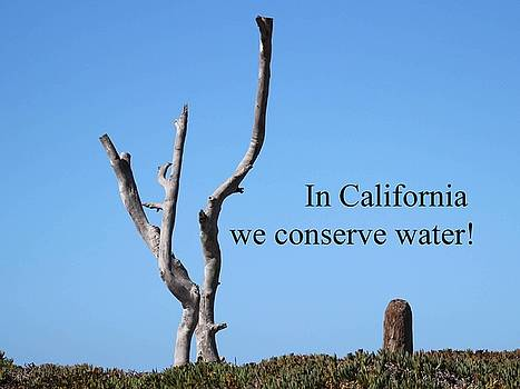 Gary Canant - Water Conservation Greeting Card