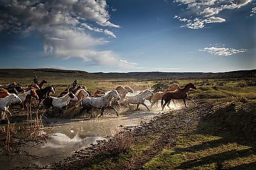 Water Crossing by Kristal Kraft