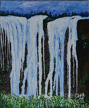 Water Fall by Usha Rai