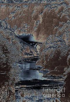 water fals Genesee River NY by Robert Bolla