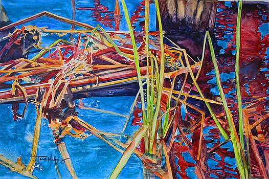 Water Fireworks I by Trish McKinney