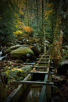 Randall Nyhof - Water Flume in Autumn by the Roaring Fork Stream at Alfred Reagan
