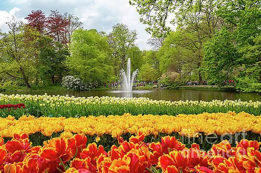Water Fountain, Keukenhof by Sinisa CIGLENECKI