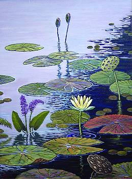 Water Garden by Jim Stratton