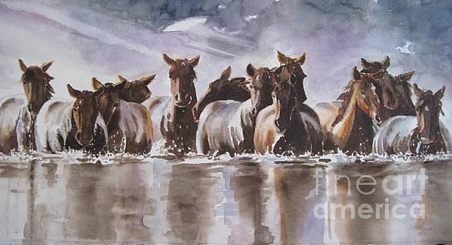 Water Horses by Paula Marsh