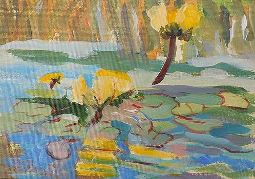 Water Lilies by Francine Frank