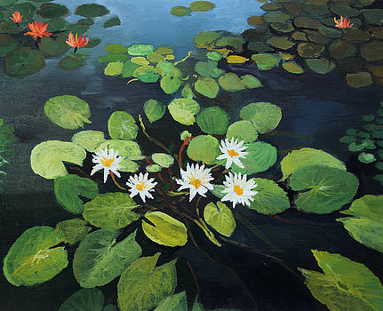 Water Lilies by Kiril Stanchev