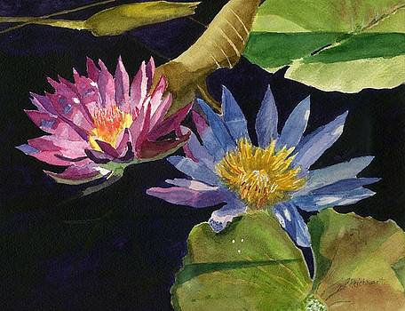 Water Lilies by Lynne Reichhart