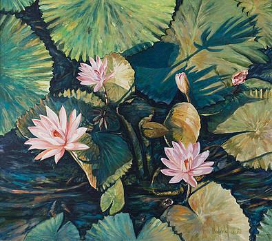 Water Lilies by Rick Nederlof