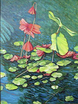 Water Lillies 1 by Thomas Michael Meddaugh