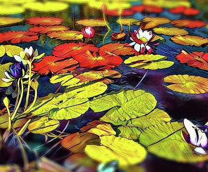 Water Lilly Pond by Russ Harris