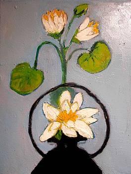 Water Lily by Elena Buftea