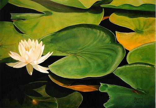 Water Lily by Keith Gantos