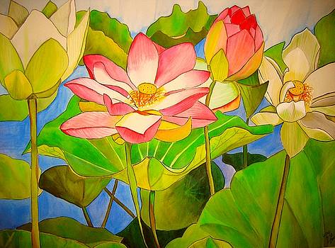 Water lily Lotus by Sacha Grossel