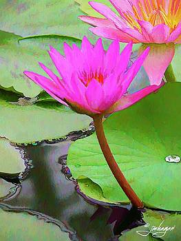 Water Lily Painting by Jan Hagan