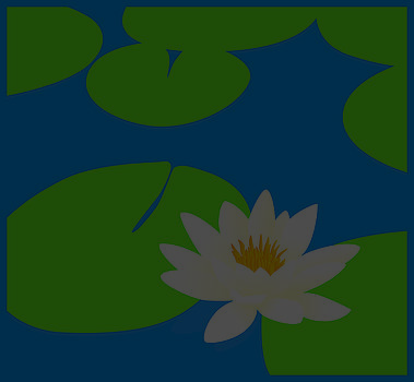 Water lily POND by David Strong