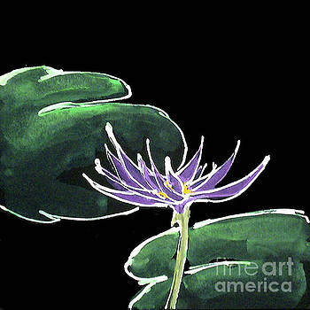 Water Lily-Purple by Chris Paschke