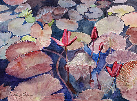 Mary Benke - Water Lily Reverie