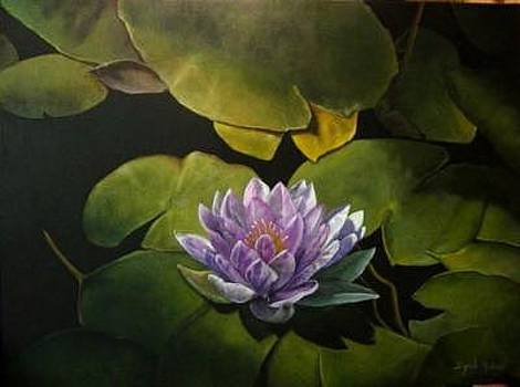 Water Lily by Syndi Michael