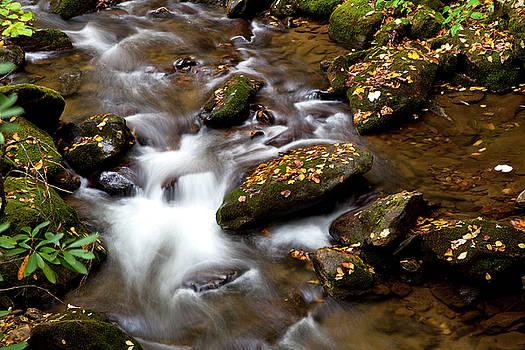 Jill Lang - Water over Rocks