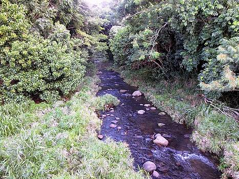 Water Path by Diamond Jade