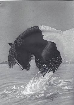 Water Play by Caren Moak-khan
