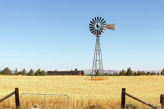 Water Pump Windmill at Wheat Farm in Rural Oregon by David Gn