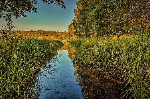 Water Reflection #h5 by Leif Sohlman