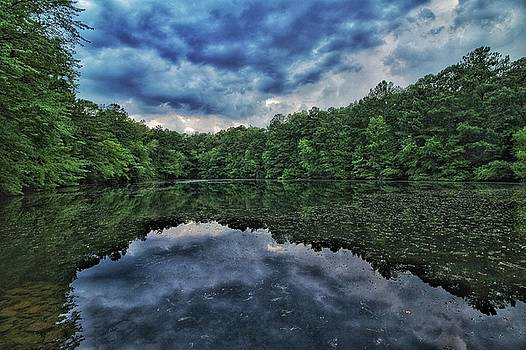Water Reflection  by Mike Dunn