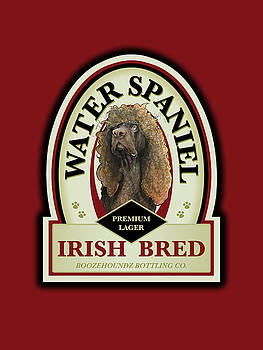 John LaFree - Water Spaniel Irish Bred Premium Lager