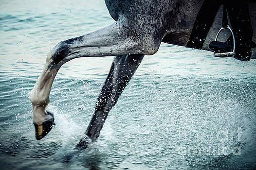 Dimitar Hristov - Water Splash Horse Legs in The Sea Water