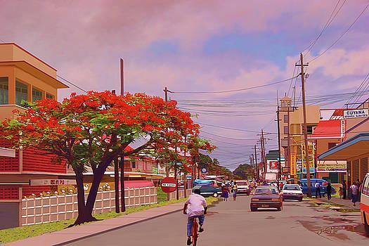 Water Street New Amsterdam Guyana by James  Mingo