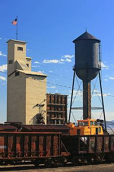 Water Tower And Coal Tower by Douglas Miller