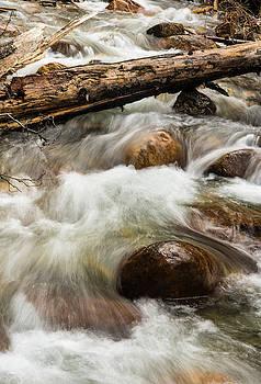 Water Under the Bridge by Alex Lapidus