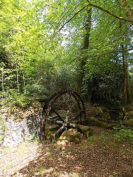 Water wheel at Enys by Matt Swann