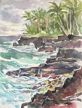 Big Island Coast by Abbie Rabinowitz