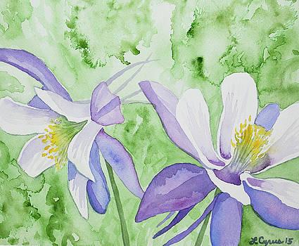 Watercolor - Blue Columbine Flowers by Cascade Colors
