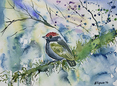 Watercolor - Chestnut-crowned Gnateater by Cascade Colors