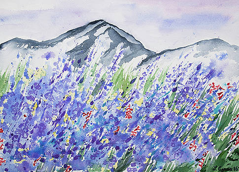 Watercolor - Colorado Mountain and Lupine Landscape by Cascade Colors