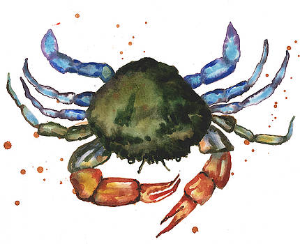 Watercolor Crab Painting by Alison Fennell