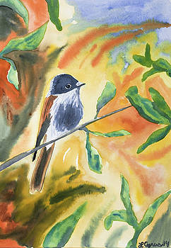 Watercolor - Delicate Perching Bird by Cascade Colors