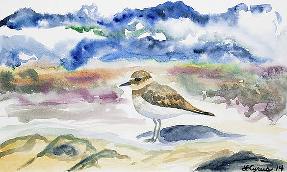 Watercolor - Double-banded Plover on the Beach by Cascade Colors