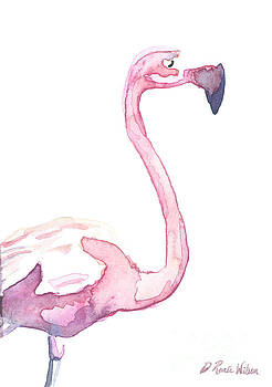Watercolor Flamingo II by D Renee Wilson