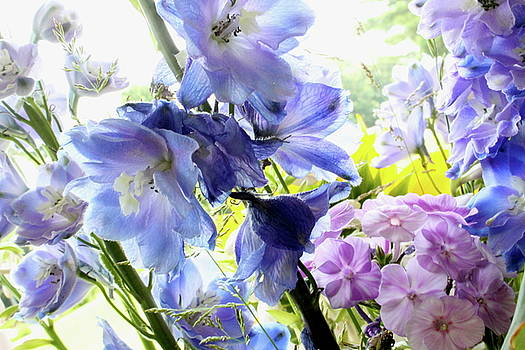 Watercolor Flowers by Nancy Furstinger