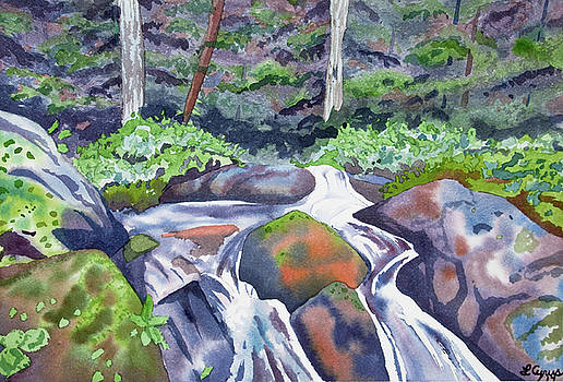 Watercolor - Forest and Mountain Stream by Cascade Colors